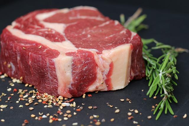 דיאטת בשר: יתרונות וחסרונות